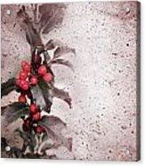 Holly Branch  Acrylic Print