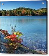 Killarney Provincial Park In Fall Acrylic Print