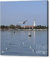 Lagoon. Venice Acrylic Print