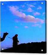 2 Late Evening Beduin Camel Walk In The Desert  Acrylic Print