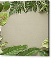 Leaves Frame Acrylic Print