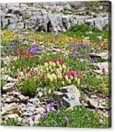 Mother Nature's Master Garden Acrylic Print