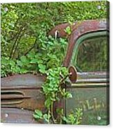 Overgrown Rusty Ford Pickup Truck Acrylic Print
