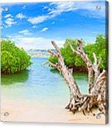 Panorama Island Acrylic Print