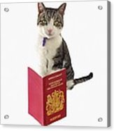 Pet Passport Acrylic Print