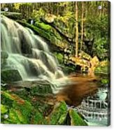 Pool In The Forest Acrylic Print