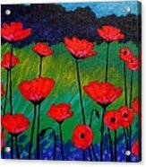 Poppy Corner Acrylic Print