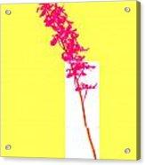 Purple Orchid Bunch Acrylic Print