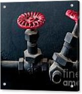 2 Red Valves Acrylic Print