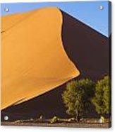 Sand Dune, Namibia, Africa Acrylic Print
