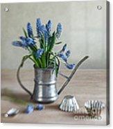 Still Life With Grape Hyacinths Acrylic Print