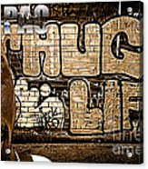 Street Phenomenon 2pac Acrylic Print