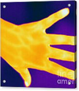Thermogram Of A Hand Acrylic Print