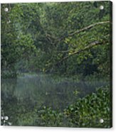 View Of The Menangul River And Rain Acrylic Print