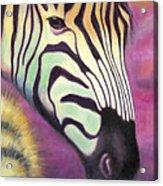 Wild Thing Acrylic Print by Tammy Olson