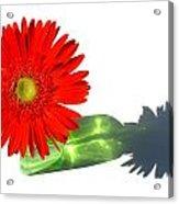 2002a-2 Acrylic Print