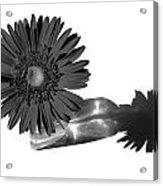 2002a2-002 Acrylic Print
