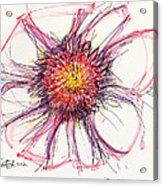 2012 Drawing #10 Acrylic Print