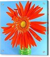 2279c2-001 Acrylic Print