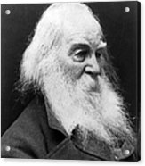 Walt Whitman (1819-1892) Acrylic Print