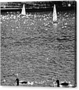 2boats2ducks In Black And White Acrylic Print