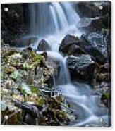 Waterfall Acrylic Print by Odon Czintos