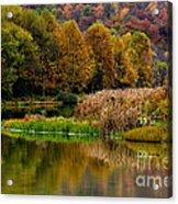 Autumn Big Ditch Lake Acrylic Print