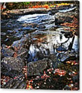 Fall Forest And River Landscape Acrylic Print
