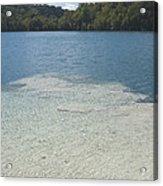 Freshwater Reef Acrylic Print