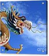 Giant Golden Chinese Dragon Acrylic Print by Anek Suwannaphoom