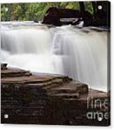 Lower Tahquamenon Falls Area Acrylic Print