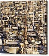 Marina Acrylic Print by Jeremy Woodhouse