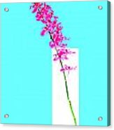 Red Orchid Bunch Acrylic Print