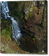 Scaleber Force Acrylic Print
