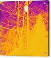 Thermogram Of Electrical Wires Acrylic Print by Ted Kinsman