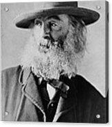 Walt Whitman, American Poet Acrylic Print