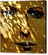 Watching You ... Acrylic Print