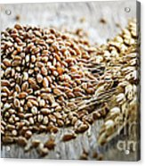 Wheat Ears And Grain Acrylic Print