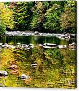 Williams River Autumn Acrylic Print