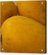 3 Yellow And Luscious Mangos On A White Sheet Acrylic Print