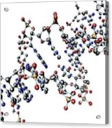 Dna Molecule, Artwork Acrylic Print