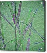 Water Reed Digital Art Acrylic Print