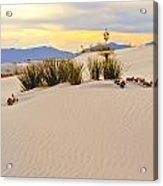 White Sands Acrylic Print