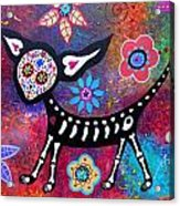 Chihuahua Day Of The Dead Acrylic Print