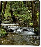 Craig Run Monongahela National Forest Acrylic Print