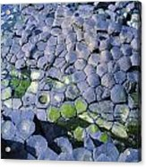 Giants Causeway, Co Antrim, Ireland Acrylic Print