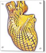 Human Heart, Artwork Acrylic Print