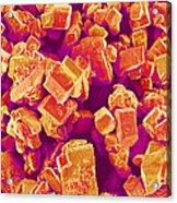 Sugar Crystals, Sem Acrylic Print