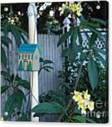 415 Premeria On Fence Acrylic Print
