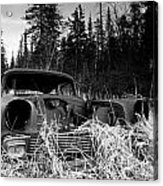 1956 Chevy Acrylic Print